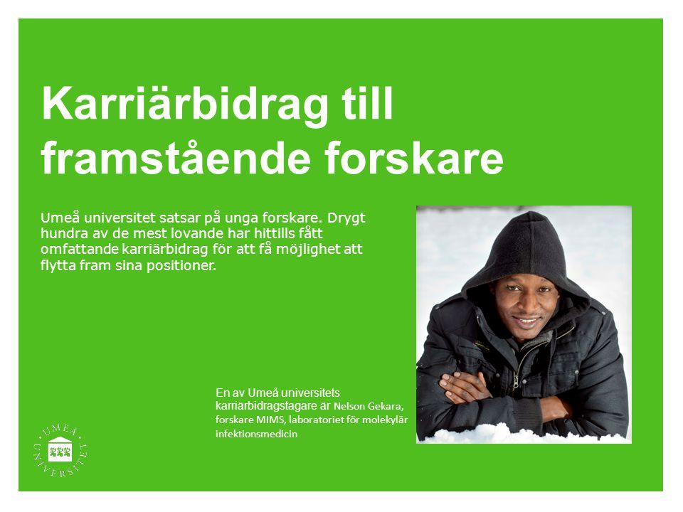 Karriärbidrag till framstående forskare Umeå universitet satsar på unga forskare. Drygt hundra av de mest lovande har hittills fått omfattande karriär
