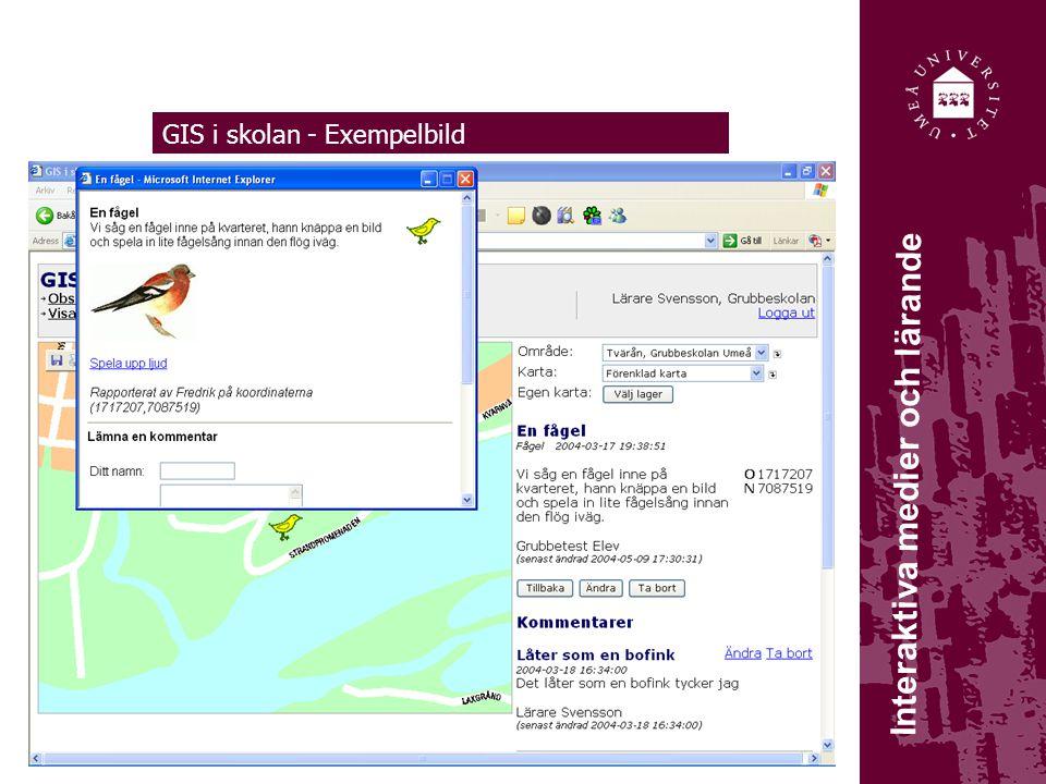 GIS i skolan - Exempelbild Interaktiva medier och lärande