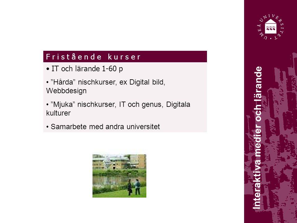 G r u n d u t b i l d n i n g Interaktiva medier och lärande IT och lärande 1-60 p Hårda nischkurser, ex Digital bild, Webbdesign Mjuka nischkurser, IT och genus, Digitala kulturer Samarbete med andra universitet G r u n d u t b i l d n i n gF r i s t å e n d e k u r s e r
