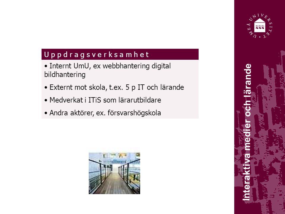 Interaktiva medier och lärande Internt UmU, ex webbhantering digital bildhantering Externt mot skola, t.ex.