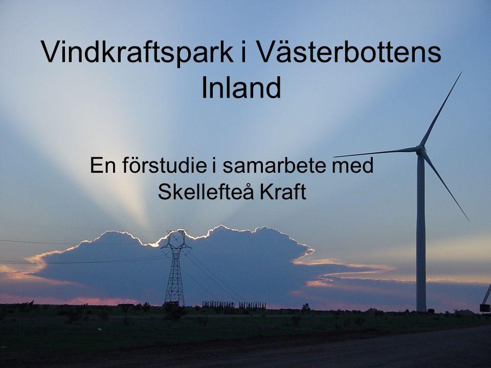 Vindkraftspark i Västerbottens Inland En förstudie i samarbete med Skellefteå Kraft