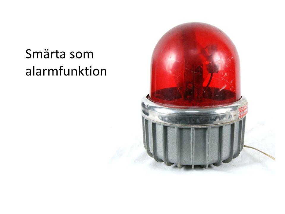 Smärta som alarmfunktion