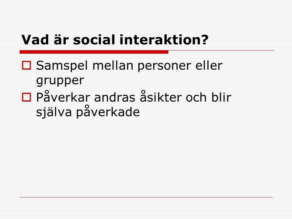 Vad är social interaktion.
