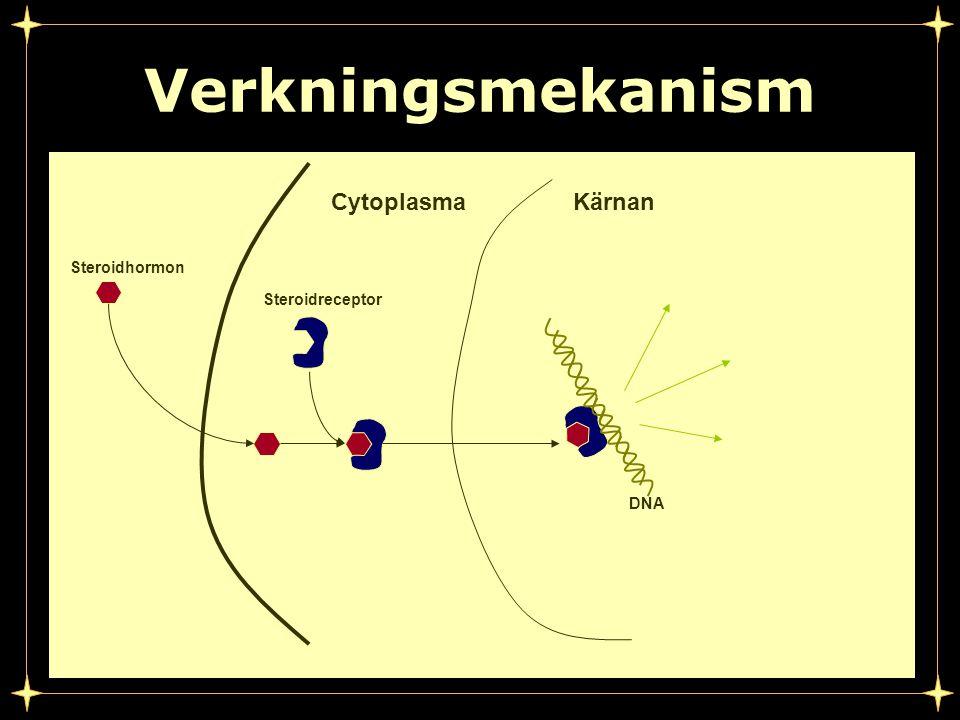 Verkningsmekanism Steroidhormon Steroidreceptor CytoplasmaKärnan DNA