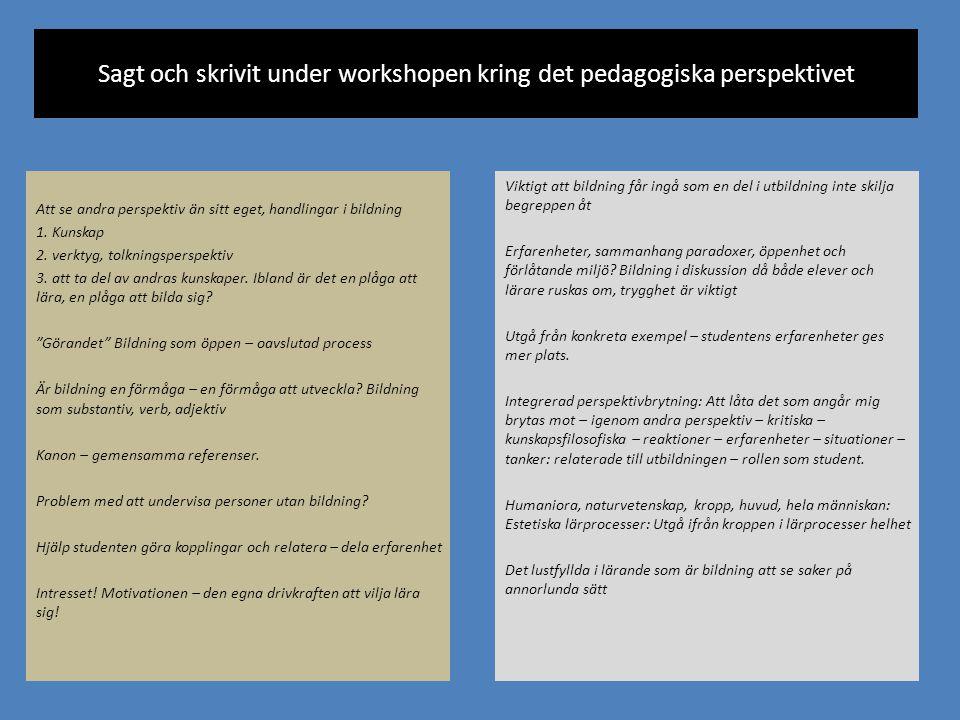 Sagt och skrivit under workshopen kring det pedagogiska perspektivet Att se andra perspektiv än sitt eget, handlingar i bildning 1. Kunskap 2. verktyg