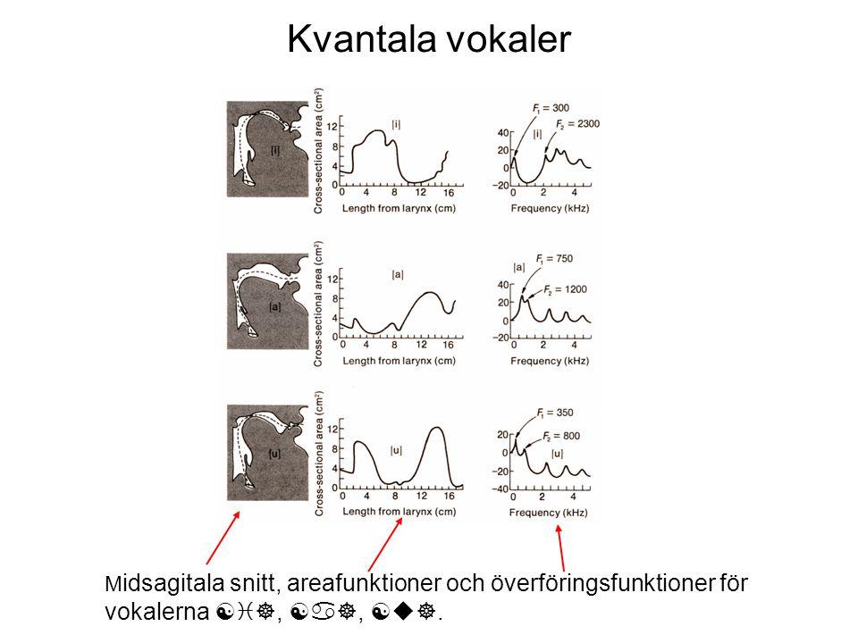Kvantala vokaler M idsagitala snitt, areafunktioner och överföringsfunktioner för vokalerna [i], [a], [u].