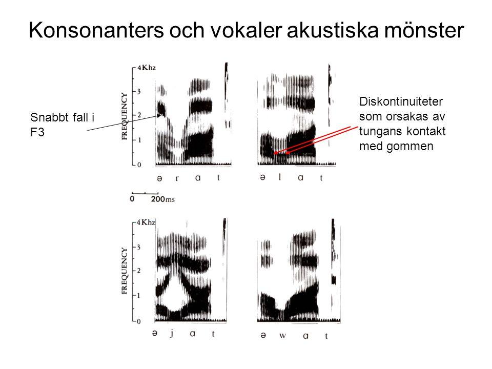 Konsonanters och vokaler akustiska mönster Skillnader & likheter l - r Transitionerna mellan vokalerna och konsonanterna är ungefär lika Amplituderna är låga under konstriktionen ffa F2 och högre Transitionerna skiljer sig markant.