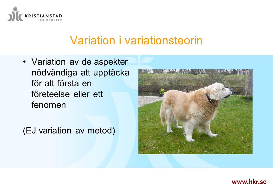 Variation i variationsteorin Variation av de aspekter nödvändiga att upptäcka för att förstå en företeelse eller ett fenomen (EJ variation av metod)