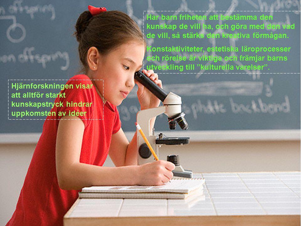 Hjärnforskningen visar att alltför starkt kunskapstryck hindrar uppkomsten av idéer Har barn friheten att bestämma den kunskap de vill ha, och göra med den vad de vill, så stärks den kreativa förmågan.