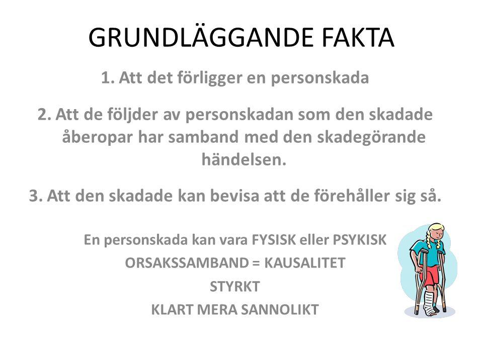 GRUNDLÄGGANDE FAKTA 1.Att det förligger en personskada 2.Att de följder av personskadan som den skadade åberopar har samband med den skadegörande händ