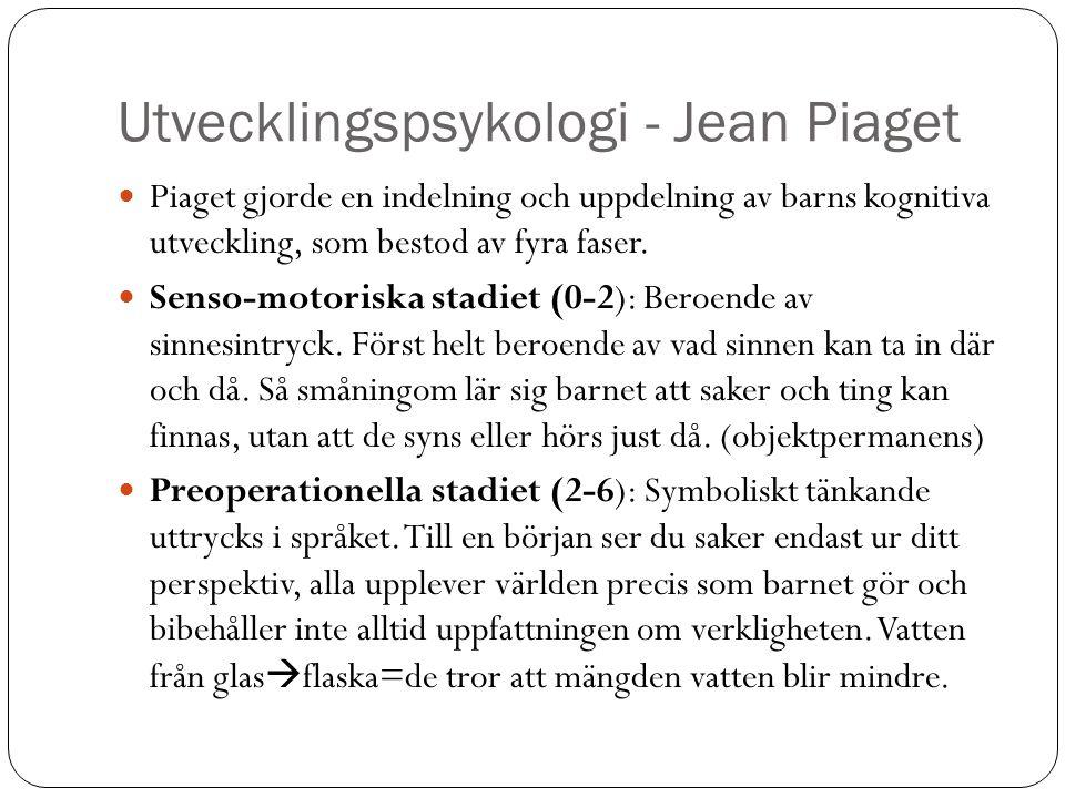 Utvecklingspsykologi - Jean Piaget Piaget gjorde en indelning och uppdelning av barns kognitiva utveckling, som bestod av fyra faser. Senso-motoriska