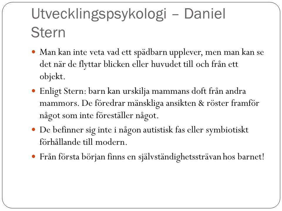 Utvecklingspsykologi – Daniel Stern Man kan inte veta vad ett spädbarn upplever, men man kan se det när de flyttar blicken eller huvudet till och från