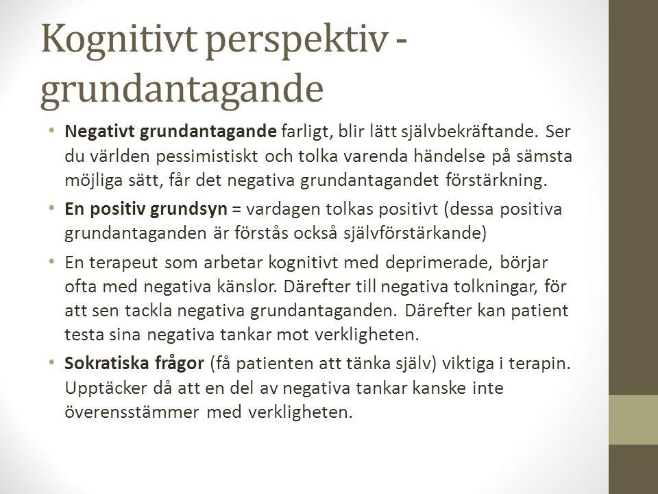 Kognitivt perspektiv - grundantagande Negativt grundantagande farligt, blir lätt självbekräftande.