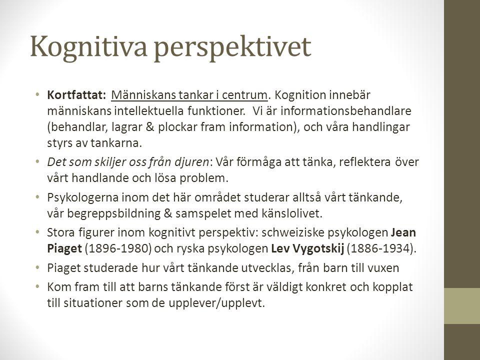 Kognitiva perspektivet Kortfattat: Människans tankar i centrum. Kognition innebär människans intellektuella funktioner. Vi är informationsbehandlare (