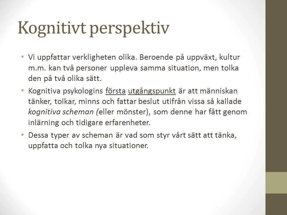 Kognitivt perspektiv Vi uppfattar verkligheten olika.
