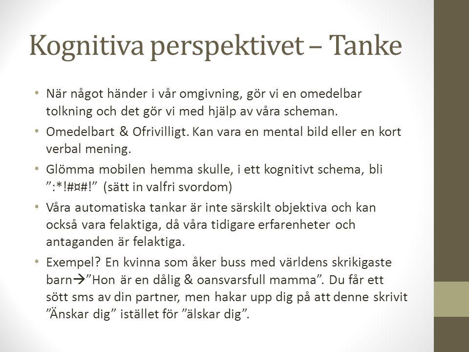 Kognitiva perspektivet – Tanke När något händer i vår omgivning, gör vi en omedelbar tolkning och det gör vi med hjälp av våra scheman. Omedelbart & O