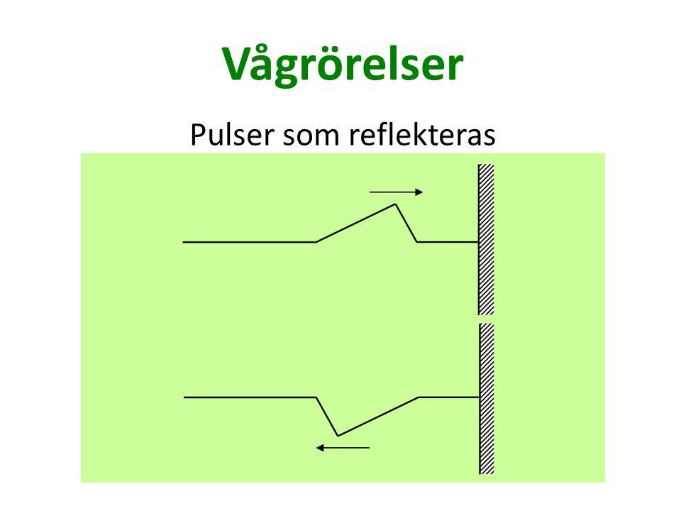 Vågrörelser Pulser som reflekteras