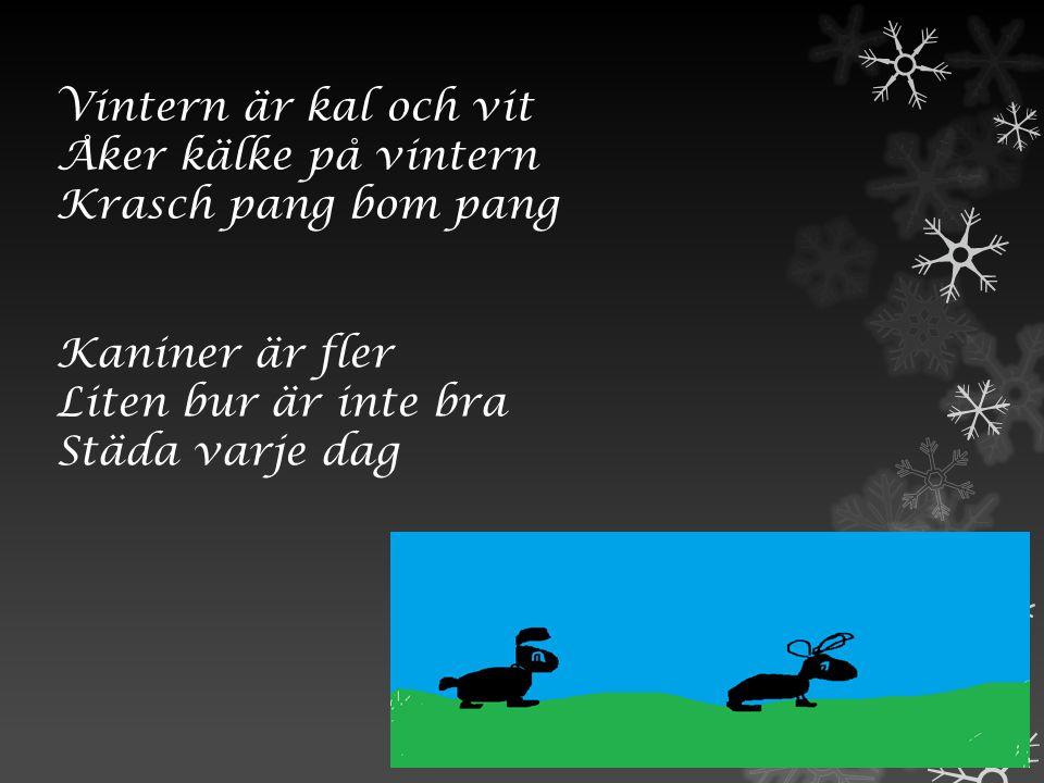Vintern är kal och vit Åker kälke på vintern Krasch pang bom pang Kaniner är fler Liten bur är inte bra Städa varje dag