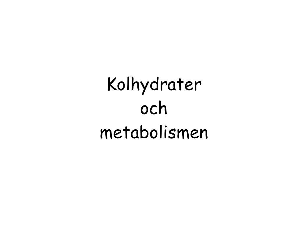 Kolhydrater och metabolismen
