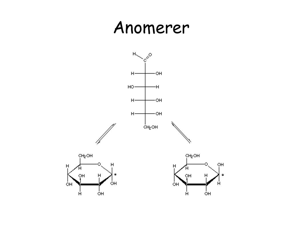 Anomerer