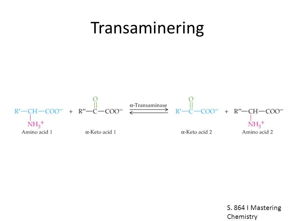 Transaminering S. 864 I Mastering Chemistry