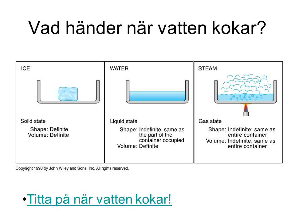 Vad händer när vatten kokar? Titta på när vatten kokar!