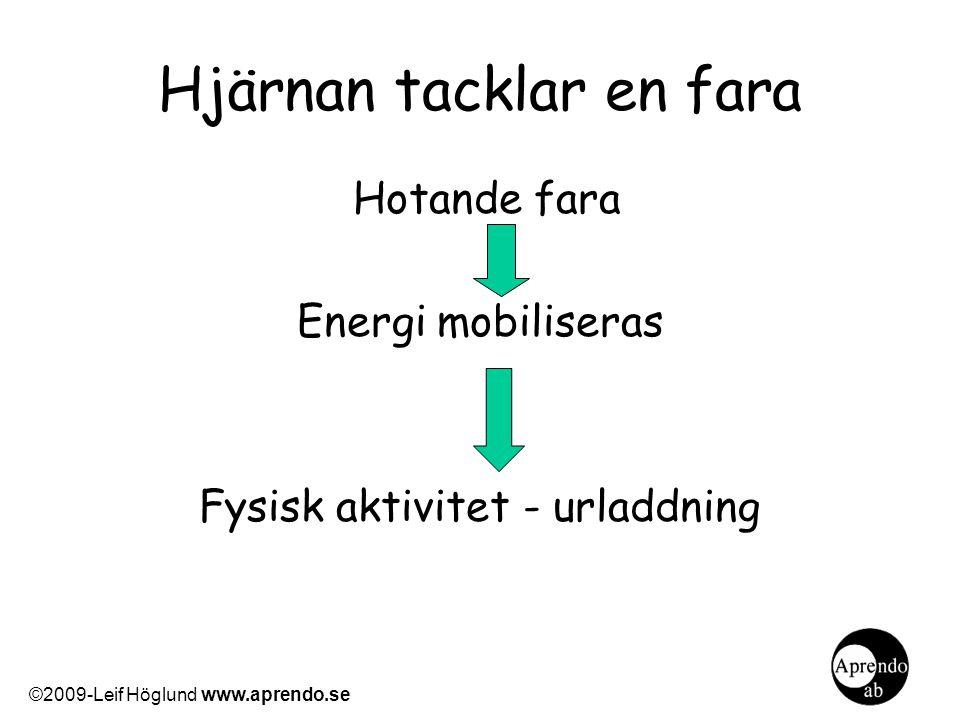 Hjärnan tacklar en fara Hotande fara Energi mobiliseras Fysisk aktivitet - urladdning ©2009-Leif Höglund www.aprendo.se