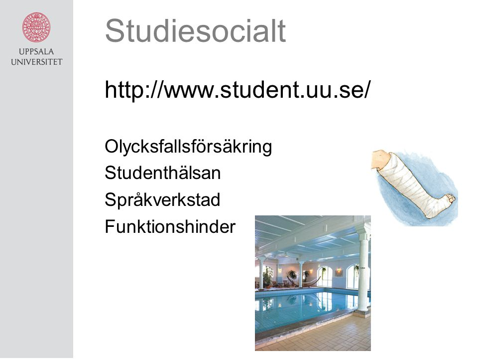 Studiesocialt http://www.student.uu.se/ Olycksfallsförsäkring Studenthälsan Språkverkstad Funktionshinder