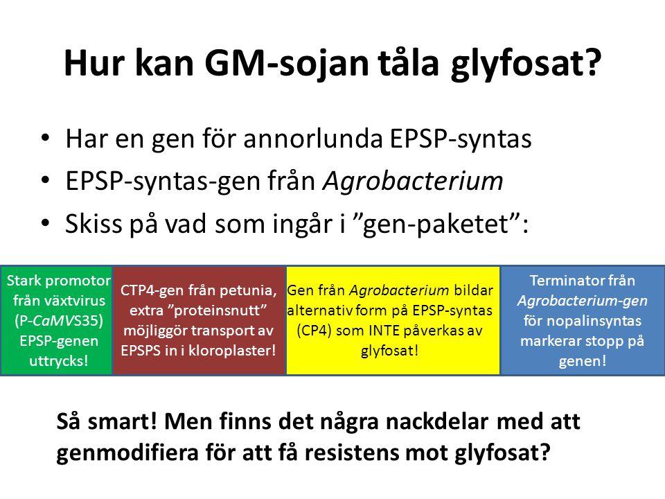 """Hur kan GM-sojan tåla glyfosat? Har en gen för annorlunda EPSP-syntas EPSP-syntas-gen från Agrobacterium Skiss på vad som ingår i """"gen-paketet"""": Termi"""