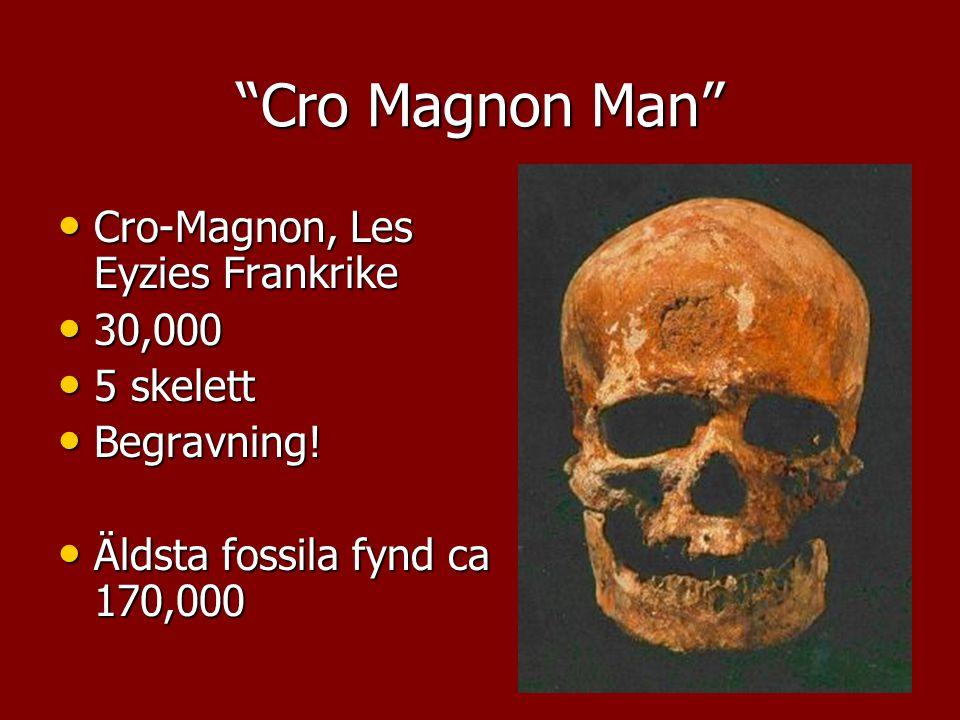 """Cro Magnon Man"" Cro-Magnon, Les Eyzies Frankrike Cro-Magnon, Les Eyzies Frankrike 30,000 30,000 5 skelett 5 skelett Begravning! Begravning! Äldsta fo"