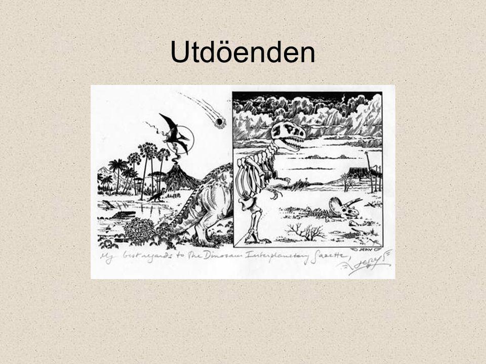 K/T-utdöendet Bevis för nedslag –Iridium –Chockad kvarts –Tektiter – fern spikes