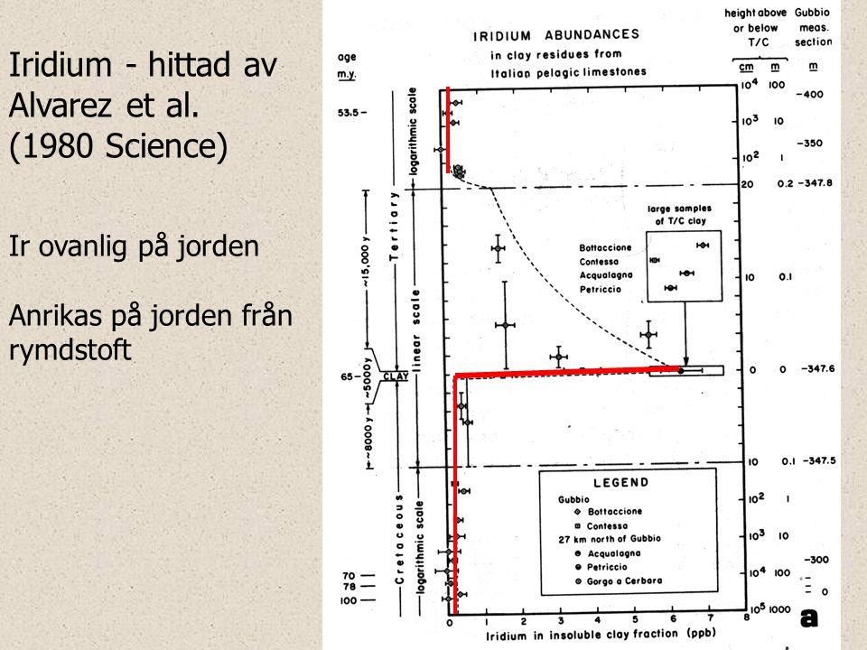 Iridium - hittad av Alvarez et al. (1980 Science) Ir ovanlig på jorden Anrikas på jorden från rymdstoft