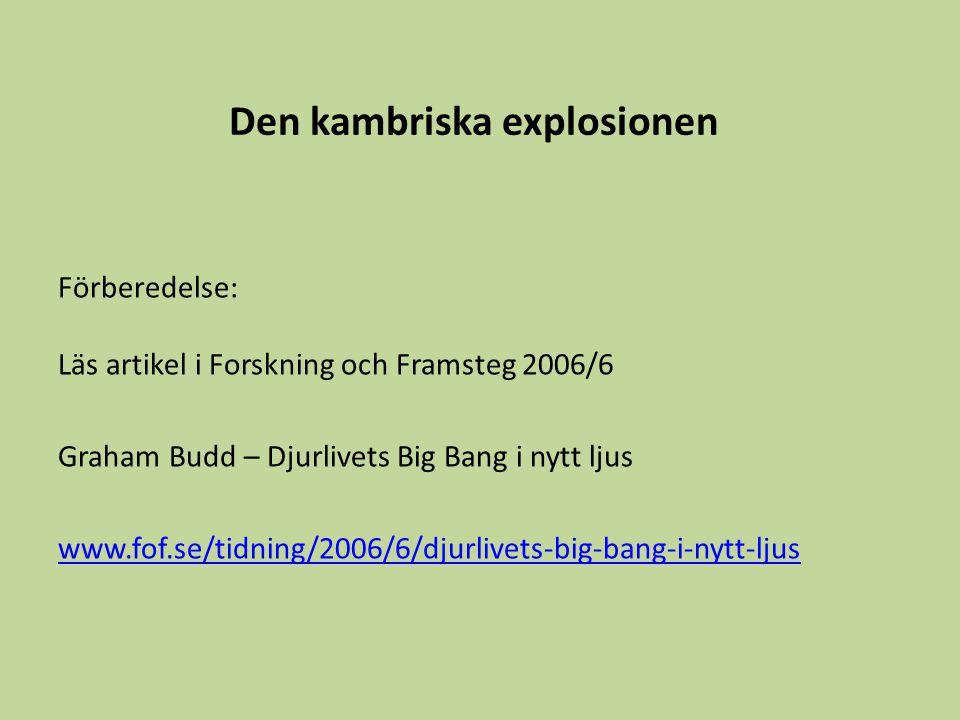 Den kambriska explosionen Förberedelse: Läs artikel i Forskning och Framsteg 2006/6 Graham Budd – Djurlivets Big Bang i nytt ljus www.fof.se/tidning/2006/6/djurlivets-big-bang-i-nytt-ljus
