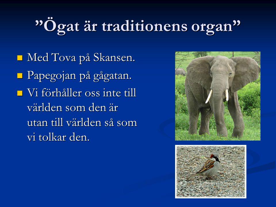 Ögat är traditionens organ Med Tova på Skansen.Med Tova på Skansen.