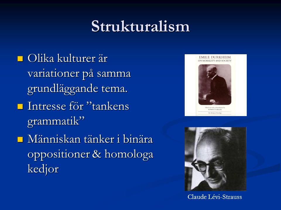 Strukturalism Olika kulturer är variationer på samma grundläggande tema.
