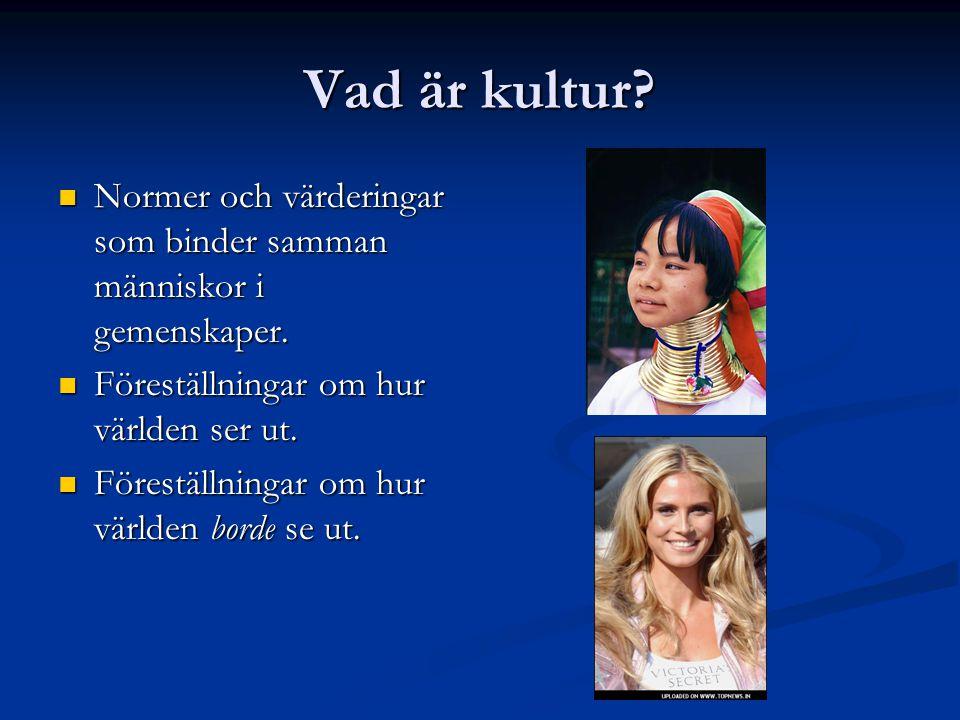 Vad är kultur.Normer och värderingar som binder samman människor i gemenskaper.