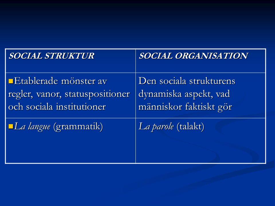 SOCIAL STRUKTUR SOCIAL ORGANISATION Etablerade mönster av regler, vanor, statuspositioner och sociala institutioner Etablerade mönster av regler, vano