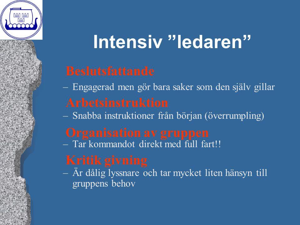"""Intensiv """"ledaren"""" –Engagerad men gör bara saker som den själv gillar –Snabba instruktioner från början (överrumpling) –Tar kommandot direkt med full"""
