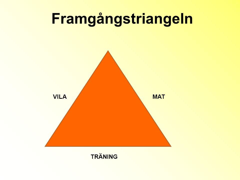 Framgångstriangeln VILAMAT TRÄNING