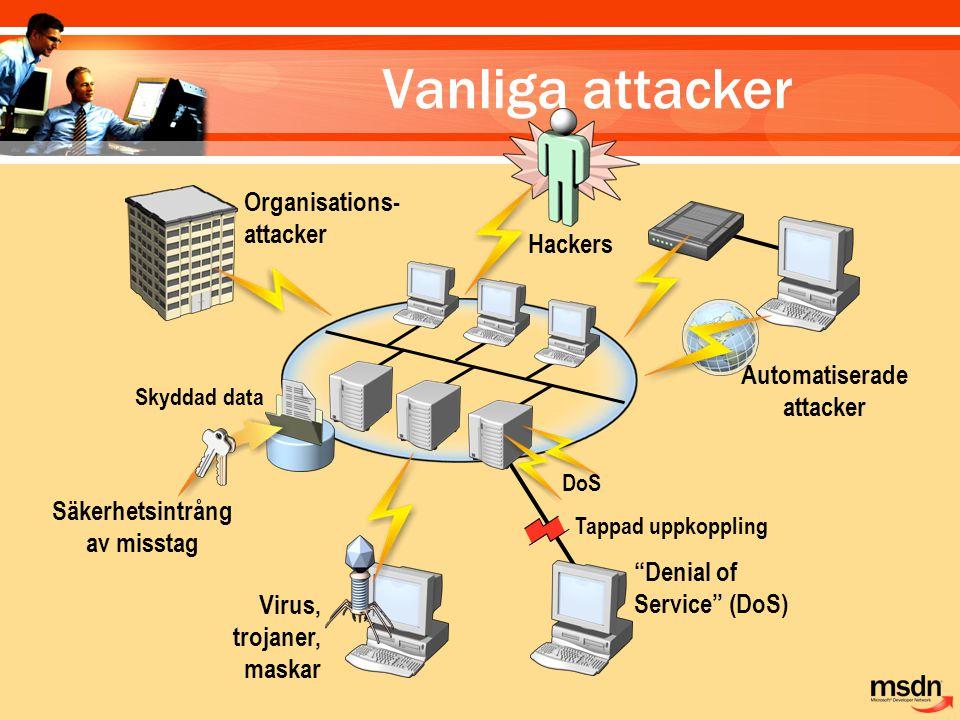 Vanliga attacker Tappad uppkoppling Organisations- attacker Skyddad data Säkerhetsintrång av misstag Automatiserade attacker Hackers Virus, trojaner,