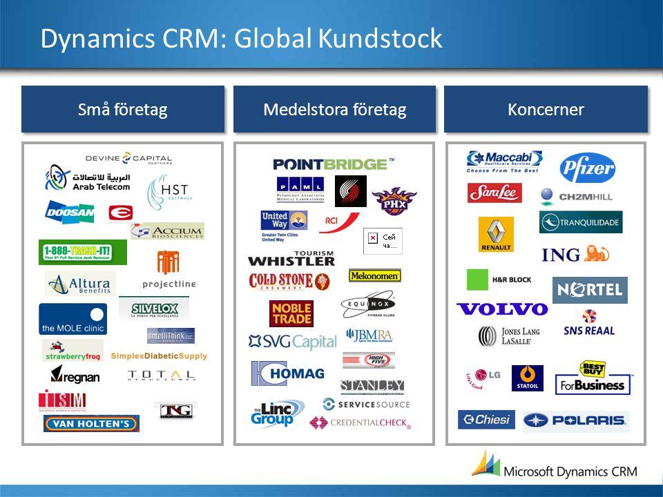 Medelstora företag Små företag Koncerner Dynamics CRM: Global Kundstock
