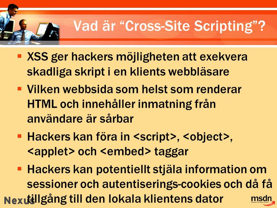 Vad är Cross-Site Scripting .
