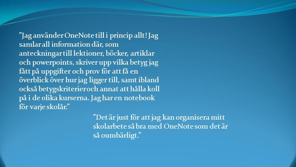 Jag använder OneNote till i princip allt.