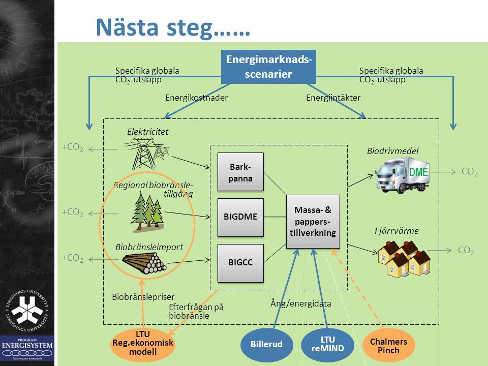 BIGCCBIGDME Bark- panna Regional biobränsle- tillgång Biobränsleimport Nästa steg…… Elektricitet LTU Reg.ekonomisk modell Biobränslepriser Efterfrågan