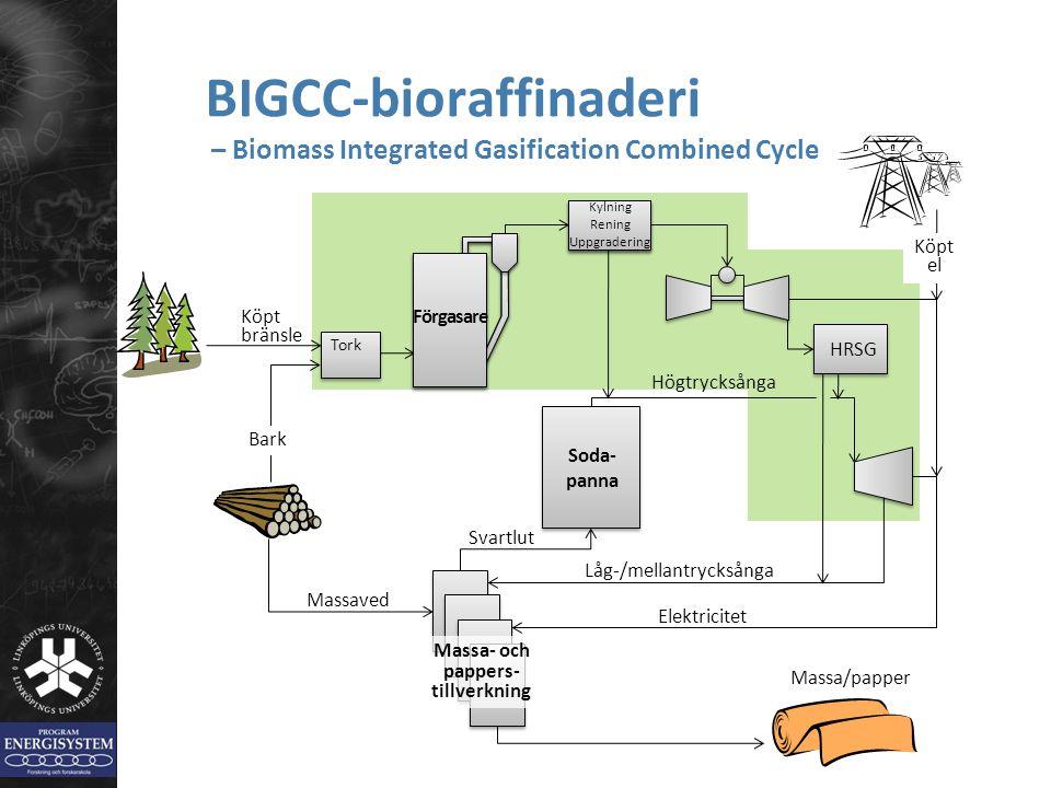HRSG BIGCC-bioraffinaderi – Biomass Integrated Gasification Combined Cycle Massa/papper Bark Förgasare Högtrycksånga Kylning Rening Uppgradering Tork