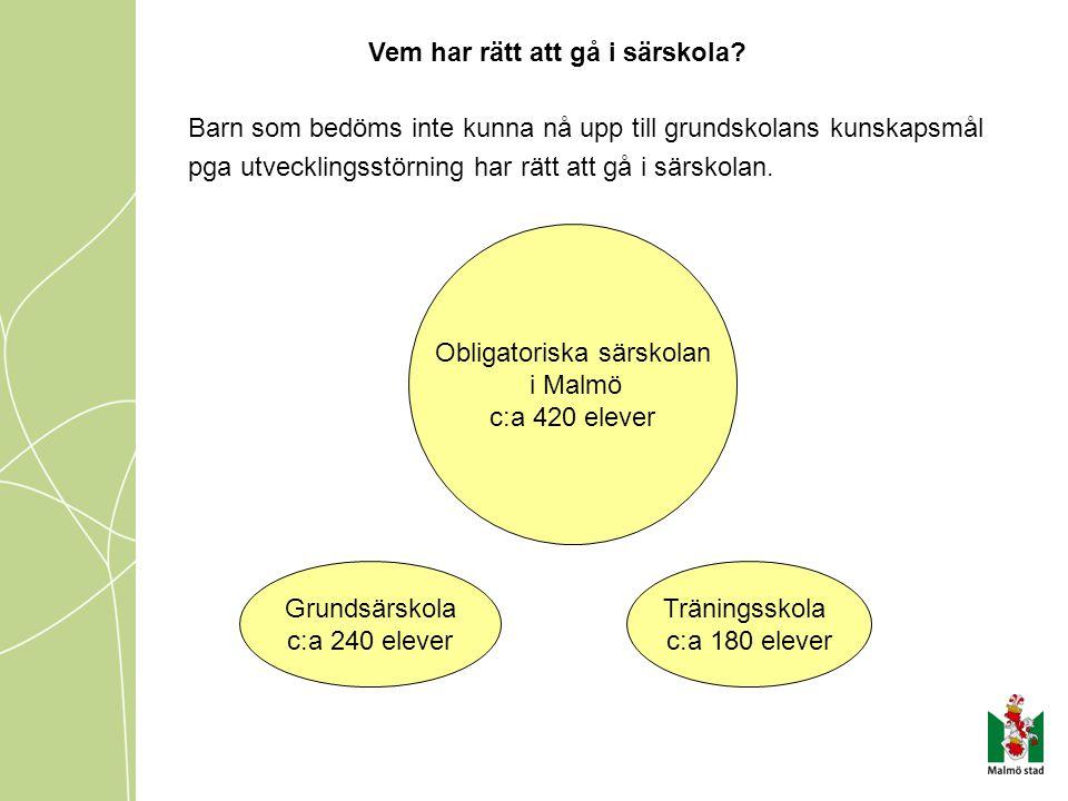Obligatoriska särskolan i Malmö c:a 420 elever Grundsärskola c:a 240 elever Träningsskola c:a 180 elever Barn som bedöms inte kunna nå upp till grundskolans kunskapsmål pga utvecklingsstörning har rätt att gå i särskolan.