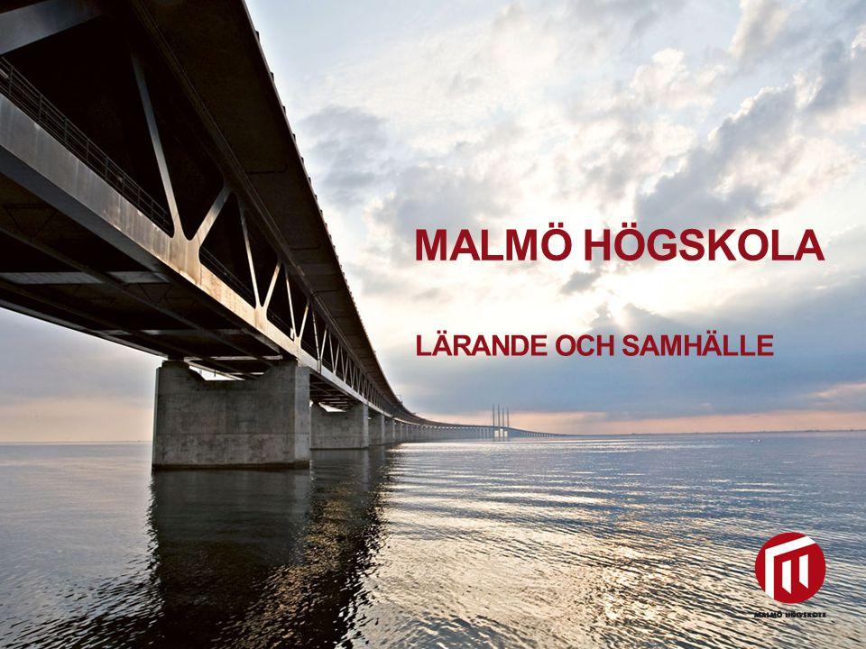 2010 05 04 MALMÖ HÖGSKOLA LÄRANDE OCH SAMHÄLLE