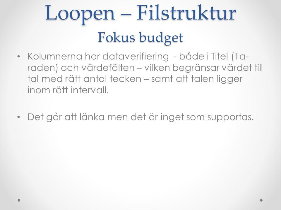 Loopen – Filstruktur Fokus budget Kolumnerna har dataverifiering - både i Titel (1a- raden) och värdefälten – vilken begränsar värdet till tal med rät