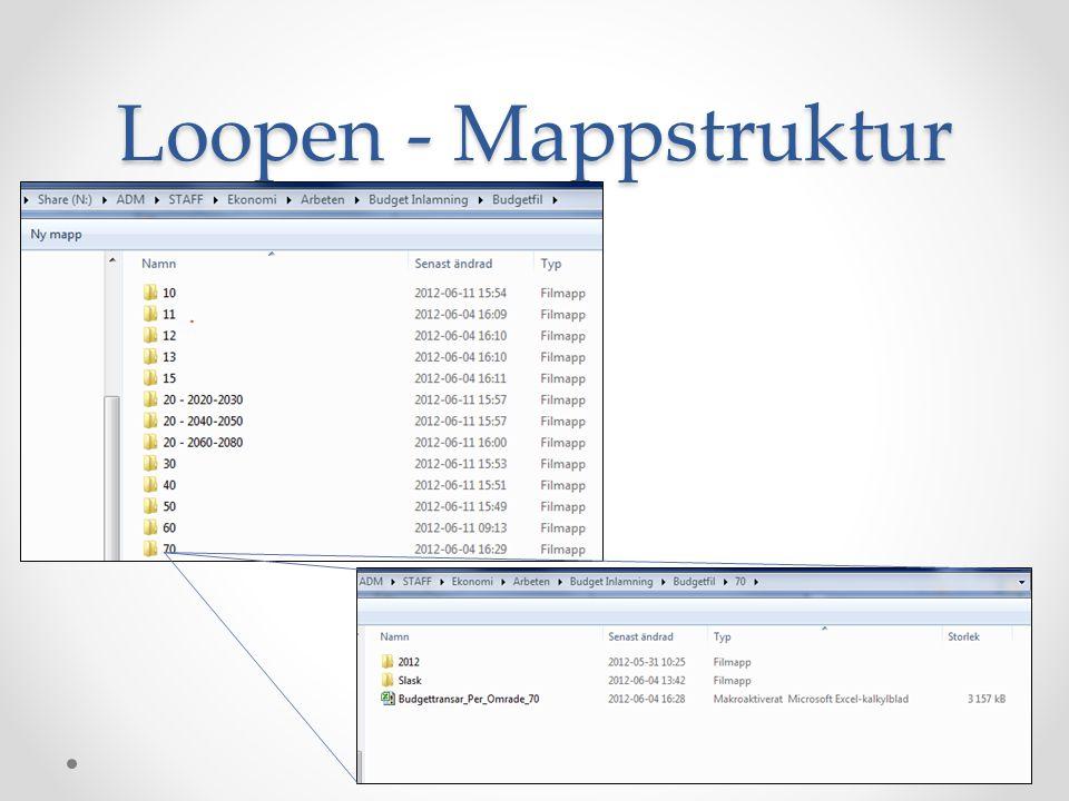 Loopen – Filstruktur Fokus budget Filen består av en rad olika flikar – varav fliken transar är viktigast transar Området A1-X3200 är av tabellformat (sortering, filtrering och summeringsmöjligheter) Kolumnerna: o A-K är Budget 2013 o L-M är Budget 2012 o O-R är Prognos o S-X är Stödfördelning o N är Skapat/ändrat