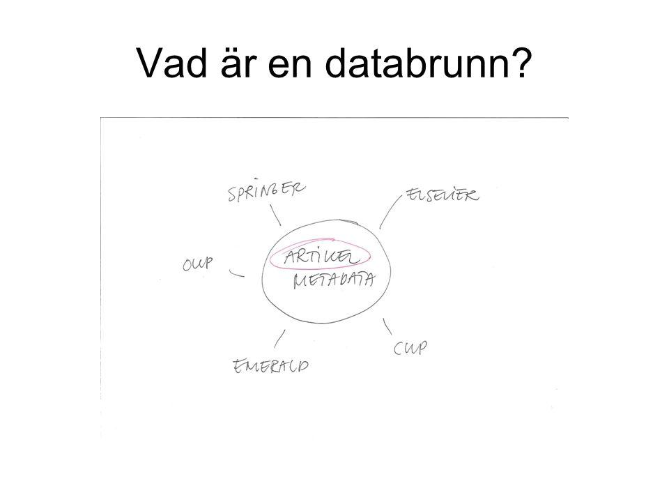 Vad är en databrunn?